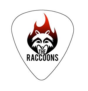 fender-heavy-guitar-pick-the-raccoons