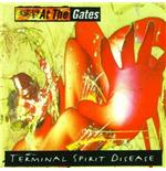 vinyl-at-the-gates-terminal-spirit-disease