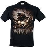 Disturbed - asylum mens (t-shirt uomo )