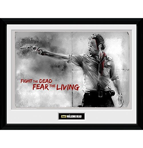 Image of        Walking Dead (The) - Rick (Foto In Cornice 30x40cm)