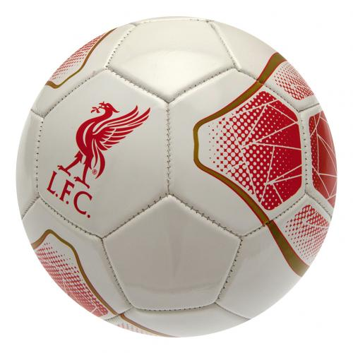 fu-ball-liverpool-fc-231235