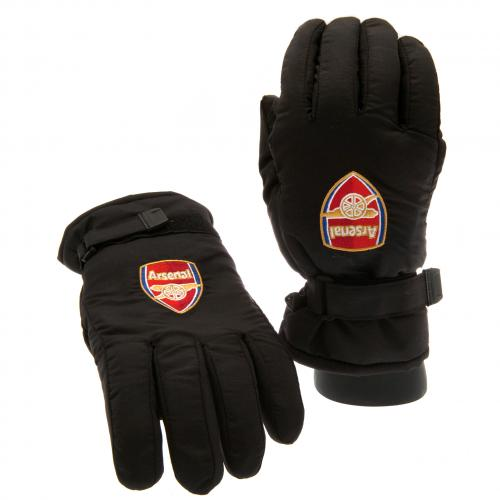 schi-handschuhe-arsenal
