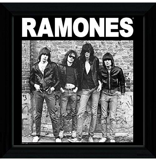 Image of Ramones (The) - Album (Foto In Cornice 30x30 Cm)