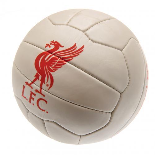 fu-ball-liverpool-fc-248009