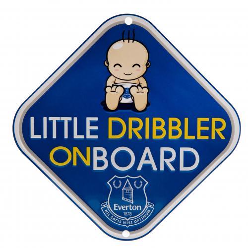Image of Accessori auto Everton 248105