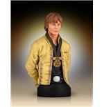 star-wars-buste-1-6-luke-skywalker-hero-of-yavin-17-cm