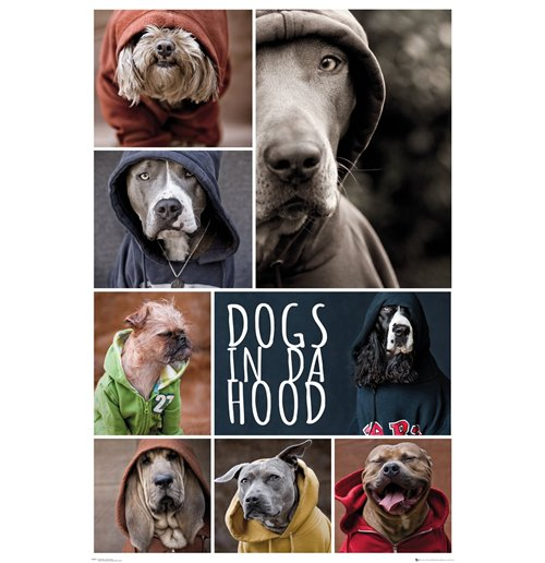 Image of Dogs In Da Hood - Dogs (Poster Maxi 61x91,5 Cm)
