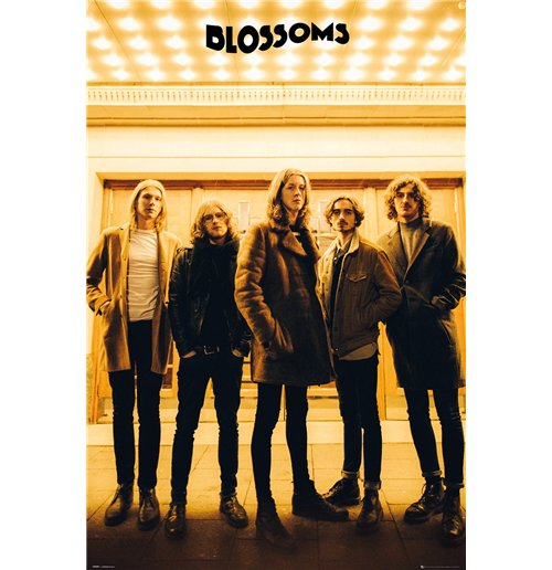 Image of Blossoms - Band (Poster Maxi 61x91,5 Cm)