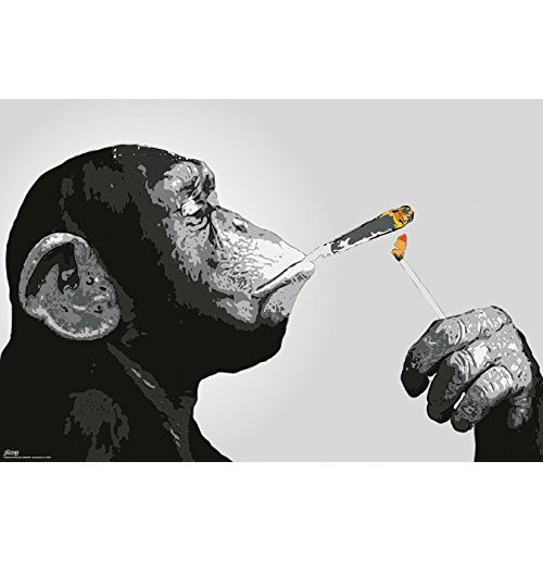 Image of Steez - Smoking (Poster Maxi 61x91,5 Cm)