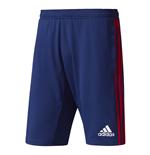 shorts-ajax-2017-2018