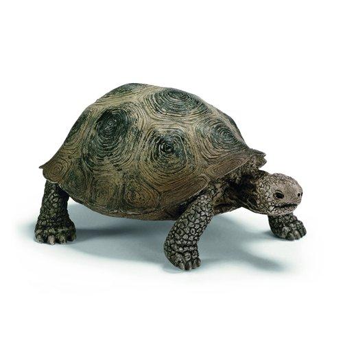 Image of Schleich 2514601 - Tartaruga Gigante
