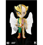 dc-comics-xxray-figur-wave-5-hawkgirl-10-cm