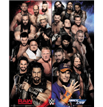 poster-wwe-289506