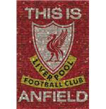 Poster Liverpool This Is Anfield - Mosaïque