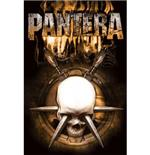poster-pantera-stabbed-skull