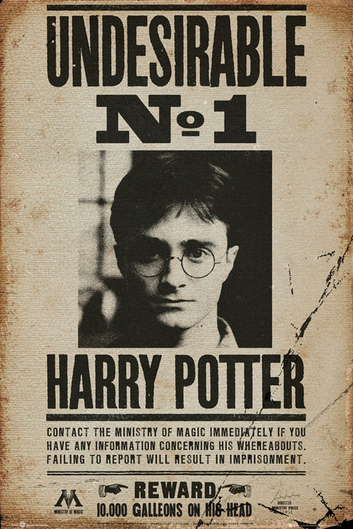 Poster Harry Potter Undesirable No 1
