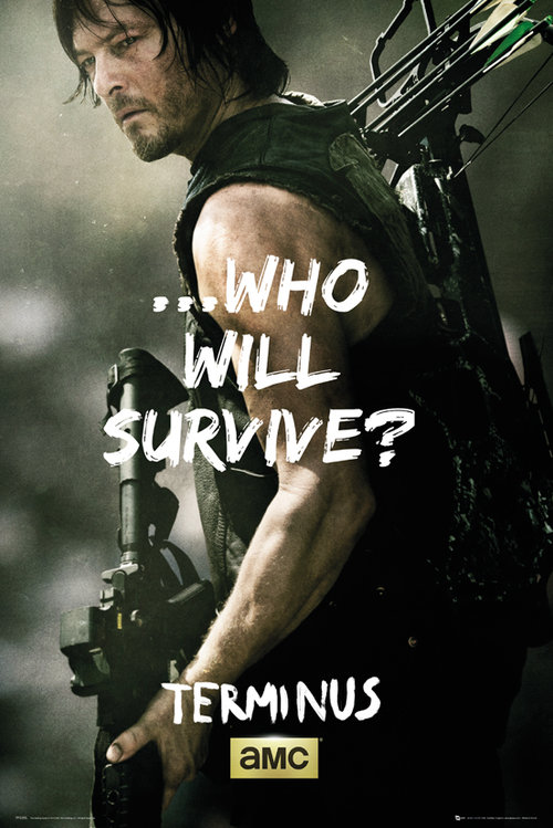 Poster Walking Dead Daryl Survive