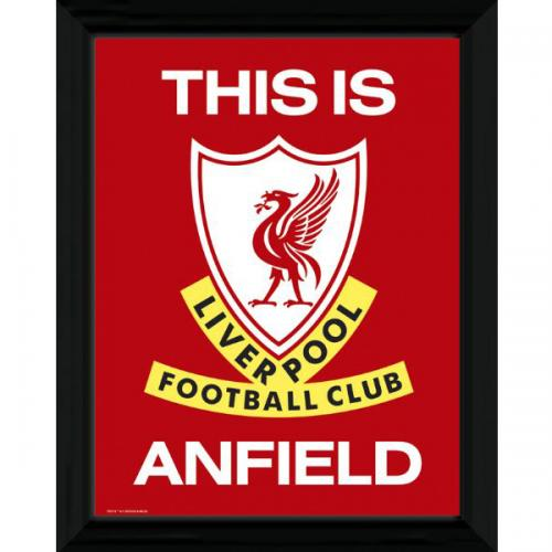 Stampa Liverpool FC 123488