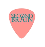 "Plettri Fender ""Medium"" (morbidi) - Second Brain"