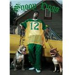 Poster Snoop Dog-Dogs