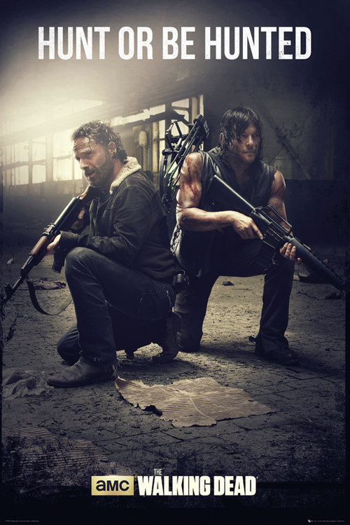 Poster The Walking Dead 129581