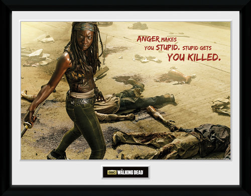 Poster The Walking Dead 129582