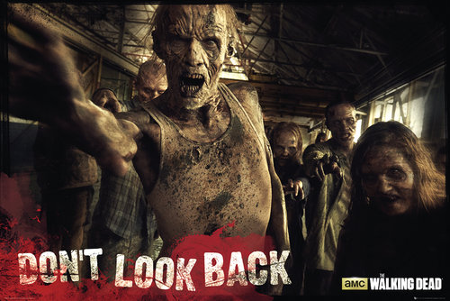 Poster The Walking Dead 129849