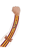 Cleveland Cavaliers NBA power shooter manicotto manica tattoo arm sleeve