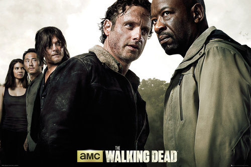 Poster The Walking Dead 150672