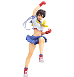 Action figure Street Fighter 176030