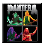 Pantera - Band Photo (Magnete)