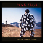 Stampa Cover dell'Album Pink Floyd - Delicate Sound Of Thunder