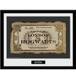 Harry Potter - Ticket (Foto In Cornice 30x40cm)