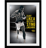Muhammad Ali - Sting Like A Bee (Foto In Cornice 30x40cm)