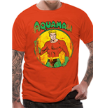 Aquaman - All The Heroes Distressed (T-SHIRT Unisex )