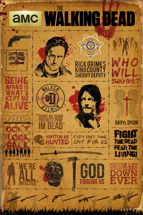 Poster The Walking Dead Infographic