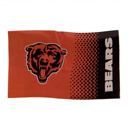 Bandiera Chicago Bears 224962
