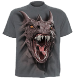Spiral - Roar Of The Dragon - Kids T-SHIRT Charcoal (T-SHIRT Bambino )