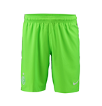 Pantaloncini Short Inter 2016-2017 Third (Verde)
