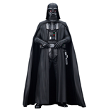 Action figure Star Wars 240680