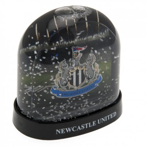 Decorazioni natalizie Newcastle United 241113