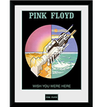 Pink Floyd - Wish You Were Here 2 (Foto In Cornice 30x40 Cm)