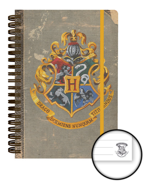 Agenda Harry Potter 248387