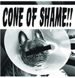 "Vinile Faith No More - Cone Of Shame Red (7"")"