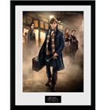 Fantastic Beasts - Group Stand (Stampa In Cornice 30x40 Cm)