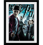 Harry Potter 5 - Main (Stampa In Cornice 15x20 Cm)