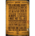 Poster Harry Potter - Quotes - 61x91,5 Cm