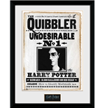 Harry Potter - Quibler (Stampa In Cornice 30x40 Cm)