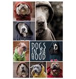 Dogs In Da Hood - Dogs (Poster Maxi 61x91,5 Cm)