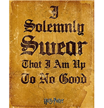 Harry Potter - I Solemnly Swear (Poster Mini 40x50 Cm)